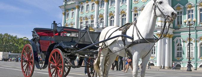 Stedentrip St. Petersburg