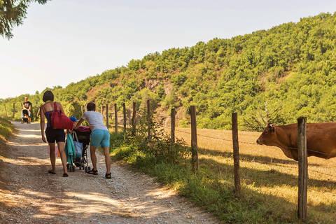 Last minute vakantiepark Zuid-Atlantische Kust 🏕️Camping Les Gorges du Chambon