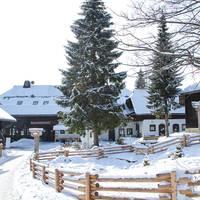 Vakantiepark Kirchleitn Dorf Kleinwild Karinthië