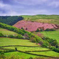 Yorkshire GB