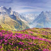 8 daagse busreis Bergen en Dalen in Tirol Tirol