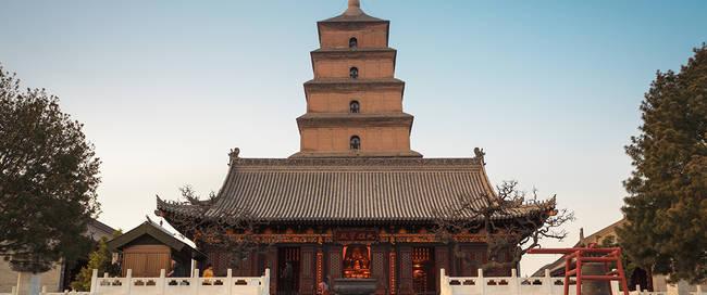 Wilde gans pagode