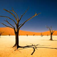 18 daagse privé rondreis inclusief vliegreis en autohuur Klassiek Namibië standaard
