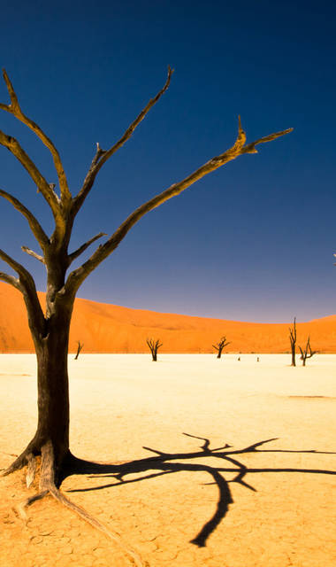 14-daagse privé rondreis - inclusief vliegreis en huurauto Namibië in Vogelvlucht (vanaf 01-01-2020