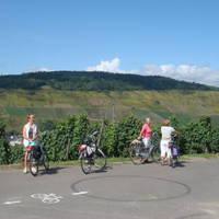 Fietsen langs de wijngaarden