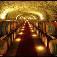 Wijnkelder Castello Monsanto