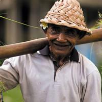 Man aan het werk op het platteland