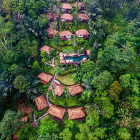 Nandini Jungle Resort