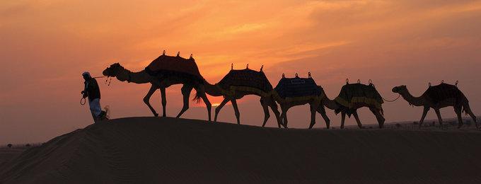 Individuele reizen Dubai
