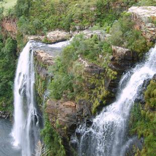 Zuid Afrika 101