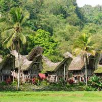 18 daagse privé rondreis inclusief vliegreis Geheimen van Indonesië