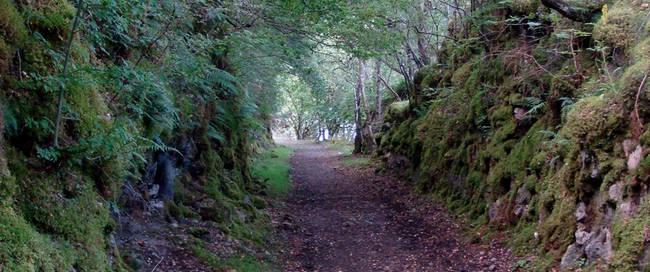 Pad langs Loch Oich
