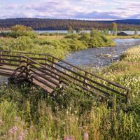Finse bossen en meren