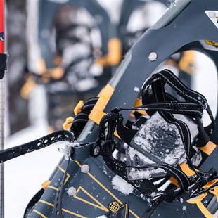 Sneeuwschoen - detail