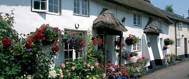 Cottages in Devon