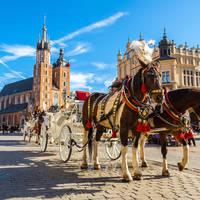 Het Grote Marktplein, Rynek Glowny, op ca. 7 minuten loopafstand van uw hotel!