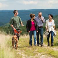 Wandelaars omgeving Wershofen