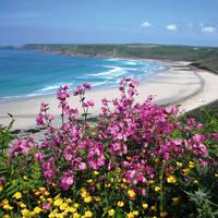 Kust Cornwall