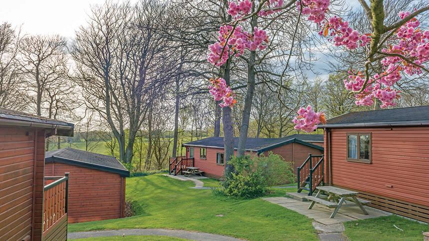 Parkoverzicht Crowhurst Park Lodges