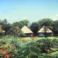Rondavels in Sefapane Lodge