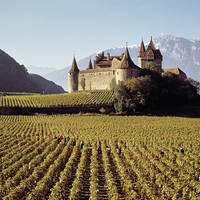 9-daagse cruise Rhône- en Saônecruise met hs Amadeus Symphony afbeelding