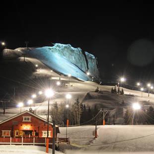 Vinter - Winter