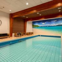 NH Veluwe Sparrenhorst - Binnenzwembad