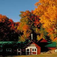 Red Barn Foliage