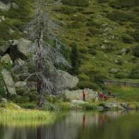 Nationale Park Nockberge