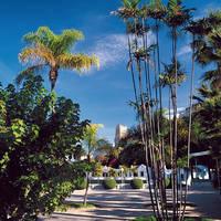 Park El Majuelo