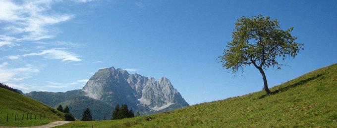 Busreizen Tirol