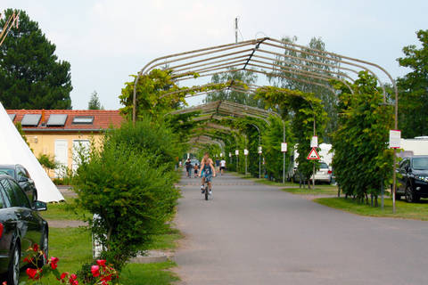 Korting vakantiehuisje Rheinland Pfalz 🏕️Camping Knaus Bad Dürkheim