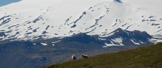 Snaefellsnes gletsjer