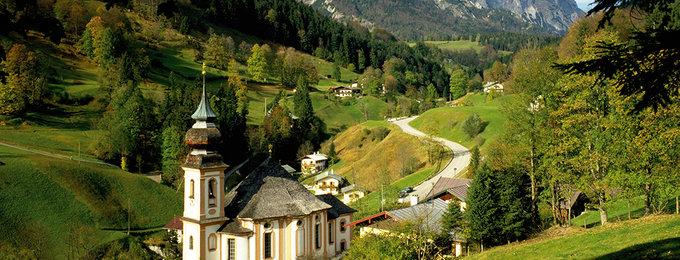 Beierse Woud