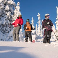 Winterwonderland met 3 skiërs - Foto: Ola Matsson