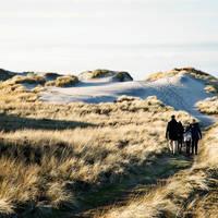 Hvide Sande - Fotograaf: Mikkel Heriba