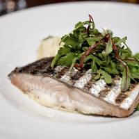 Culinair - Foto: Tuukka Ervasti