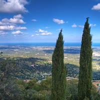 Selva di Fasano