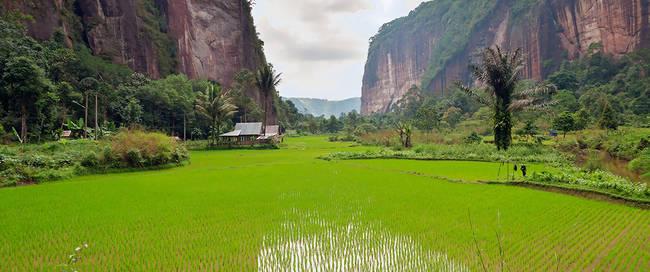 Harau valley in Bukittinggi