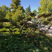 Bordeaux - Jardin Public stadspark