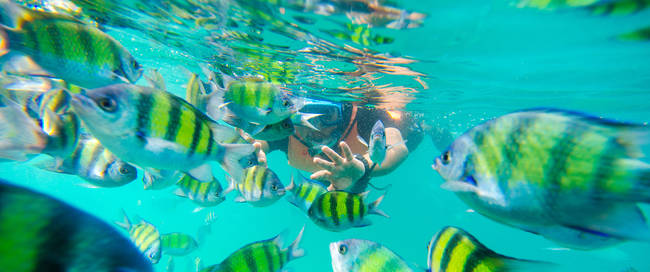 Onderwaterwereld van Langkawi