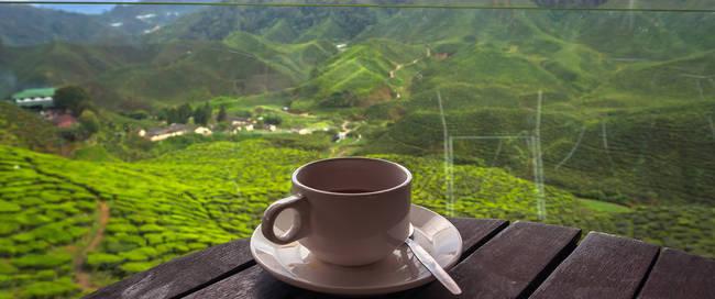 Heerlijk kopje koffie in Cameron Highlands