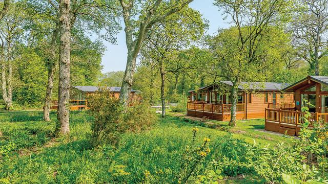 Parkoverzicht Wareham Forest Lodge