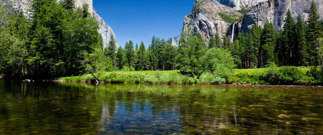 yosemite-national-park-and-giant-sequoias-trip-in-san-francisco-117263