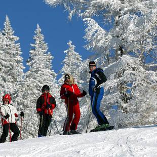 skiërs in Dachstein