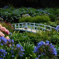 Falmouth, Cornwall - Trebah Garden