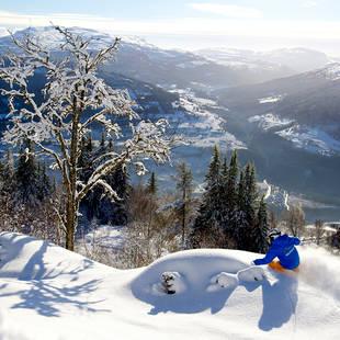 Skiër en overzicht