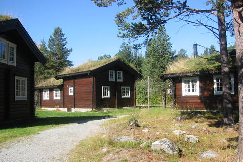 Goedkope autovakantie Midden-Noorwegen 🚗️Bardøla Vakantiewoningen