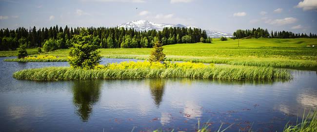 Fäviken in Jämtland - Foto: Simon Paulin