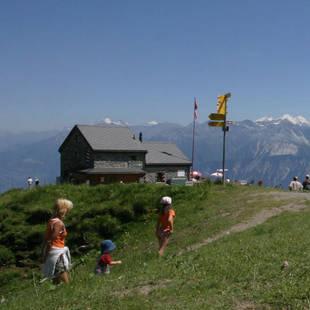 Zwitserse bergen